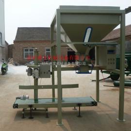 化肥包装机肥料包装机 有机肥包装机 自动定量包装机厂家