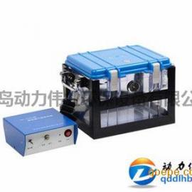 VOC气体怎么采样DL-6800型真空箱气袋采样器价格 品牌:青岛动力伟