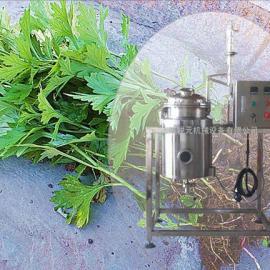 小型艾草精油提取设备