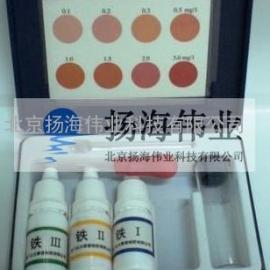 铁离子检测试剂盒