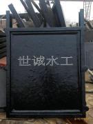 泵站双向止水铸铁闸门