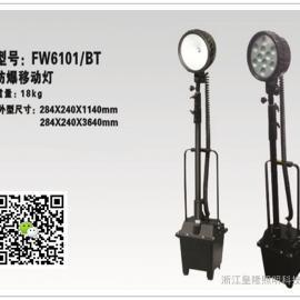 应急照明灯24V 30W FW6101防爆灯