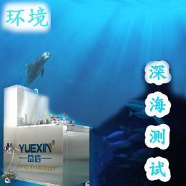 热销新款【IPX8-250A】海洋深度水压试验机 岳信直销