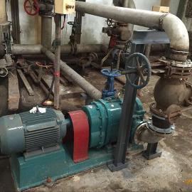 污泥泵--新疆污泥泵厂家--橡胶转子污泥泵-剩余污泥泵