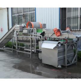 天翔供应橄榄菜涡流清洗机、蔬菜果蔬清洗机 认定品牌