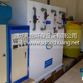 新疆大型水厂用什么消毒--次氯酸钠发生器HC