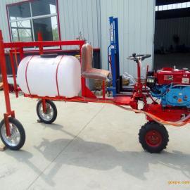 厂家出售自走式三轮打药机价格