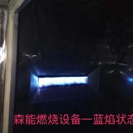 SHOEI直燃式燃�馊��器,日本正英DCM燃��器