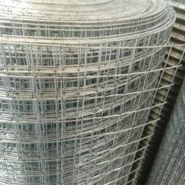 海口热镀锌钢丝电焊网-广东楼房外墙保温钢丝网:厂家专供