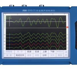 RSM-SY5(T)基桩声波检测仪