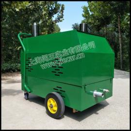 闯王CWRS-02西藏沙发地毯清洗机厂家直销 多功能蒸汽清洗设备