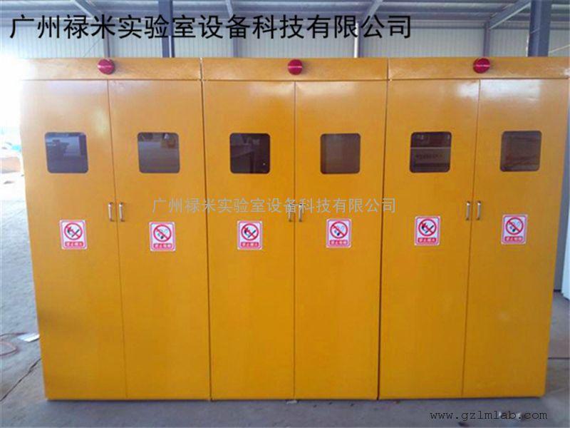 禄米实验室气瓶柜 钢瓶柜 单瓶双瓶三瓶气瓶柜可带报警装置