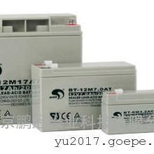赛特蓄电池BT-HSE-250-12 12V250AH/20HR***价格