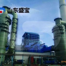 山东玻璃钢脱硫塔供应商/玻璃钢塔器厂家/山东盛宝