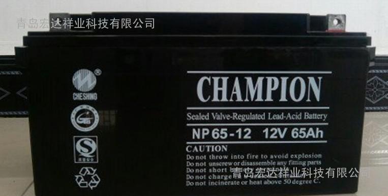 广东志成冠军蓄电池NP100-12阀控拭12V100AH批发/报价