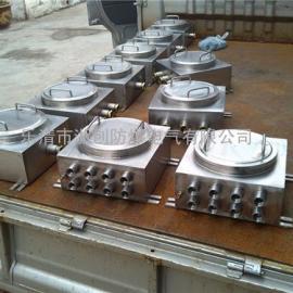 BJX51-20/8防爆接线箱/不锈钢304材质防爆接线箱