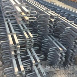 CD-40型桥梁伸缩缝图片