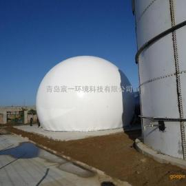 大型污水处理项目4000立方双膜气柜沼气储气柜
