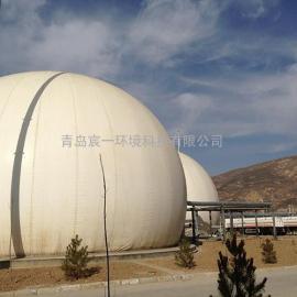 河南省2017年北京煤气工项目公用1500乘方双膜气柜