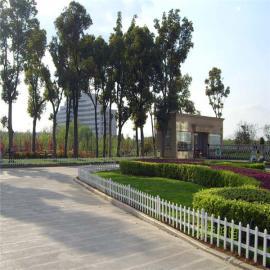枞阳老洲镇农村绿化护栏|枞阳pvc塑钢护栏|草坪栅栏