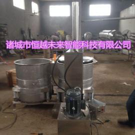 恒越未来HYWL-500L腌制萝卜压榨机液压榨汁机