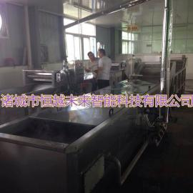 恒越未来HYWL-300L食物菜肴榨汁机 粉肠压迫机