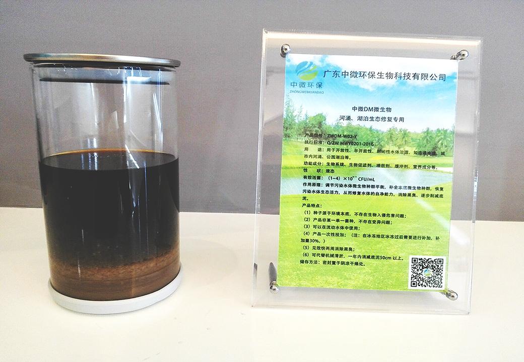 黑臭水体生态修复专用中微DM微生物(液体)