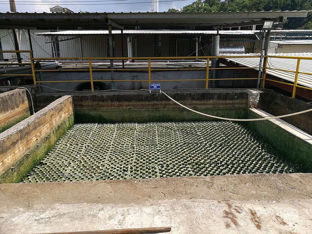 畜牧养殖废水处理专用中微DM微生物(固态)