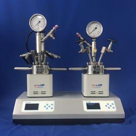 供应四川实验室高压反应釜 水热反应釜