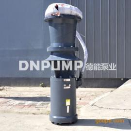 天津500QSZ大功率简易轴流泵