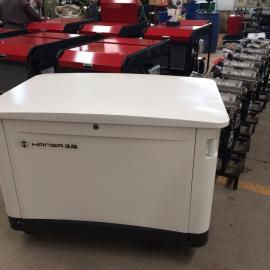 进口小型10KW汽油发电机