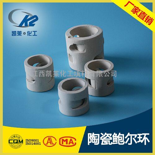 鲍尔环陶瓷填料 化工填料