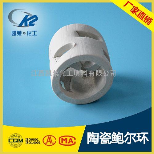 陶瓷鲍尔环 陶瓷填料 凯莱鲍尔环生产 萍乡填料厂家