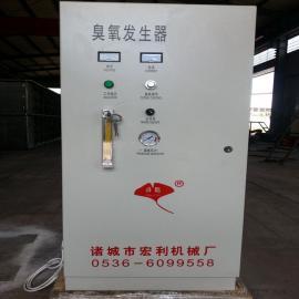 可以来图定制的臭氧发生器 厂家专卖