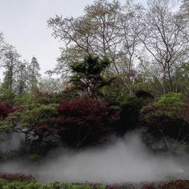 舟山房地产雾森景观-人造雾-人造雾设备