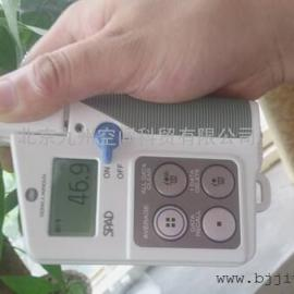 SPAD-502叶绿素仪价格/叶绿素仪生产