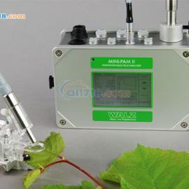 德国WALZ MINI-PAM-II超便携式调制叶绿素荧光仪