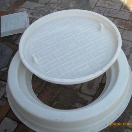祥润井盖塑料模具