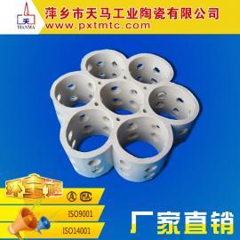 萍乡天马热销 陶瓷多孔洗涤环 耐酸 耐碱 耐热