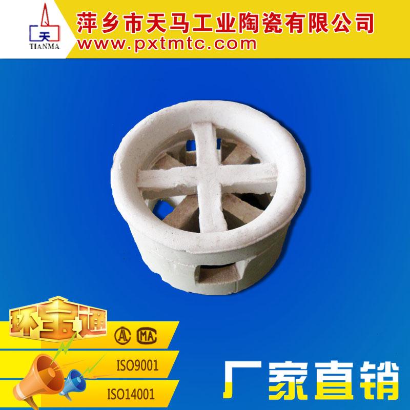 萍乡天马批发 耐磨 化工填料 陶瓷阶梯环