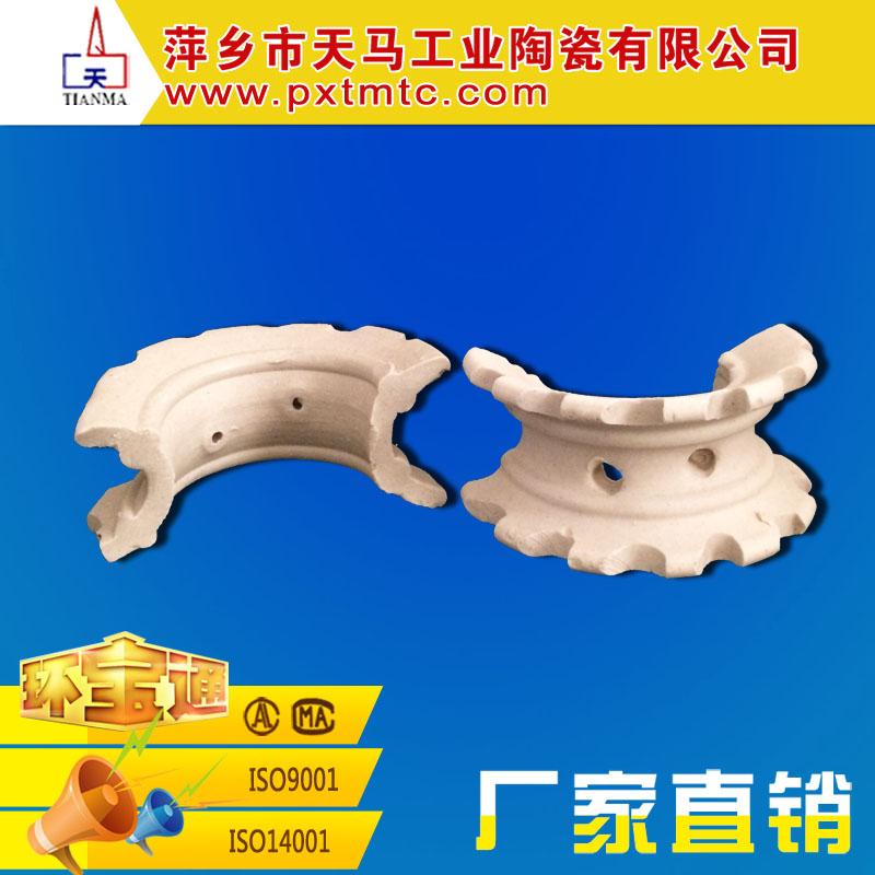 直销优质散堆填料 陶瓷异鞍环