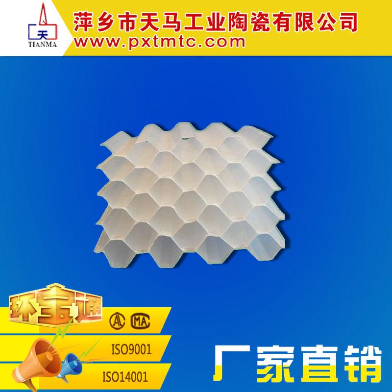 厂家直销优质环保填料 塑料蜂窝填料