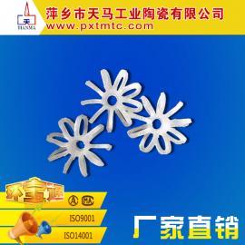 天马供应塑料化工填料 塑料九条环
