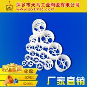 优质鲍尔环 聚四氟乙烯鲍尔环 填料