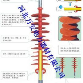 FXBW4-110/70复合绝缘子,悬式合成绝缘子