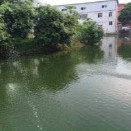 城市黑臭水体治理|黑臭水体生态修复
