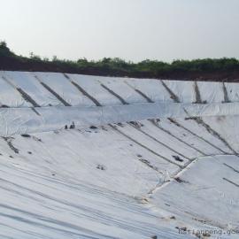 土工布质量检测报告