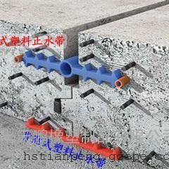 昭通市PVC塑料止水带