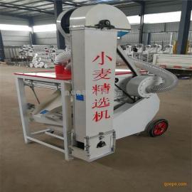 菜籽种子清选机 水稻种子筛选机 厂家直销自动筛选机