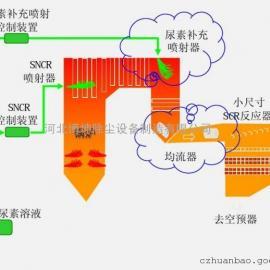 脱硝超低排放设备--SNCR+SCR脱硝
